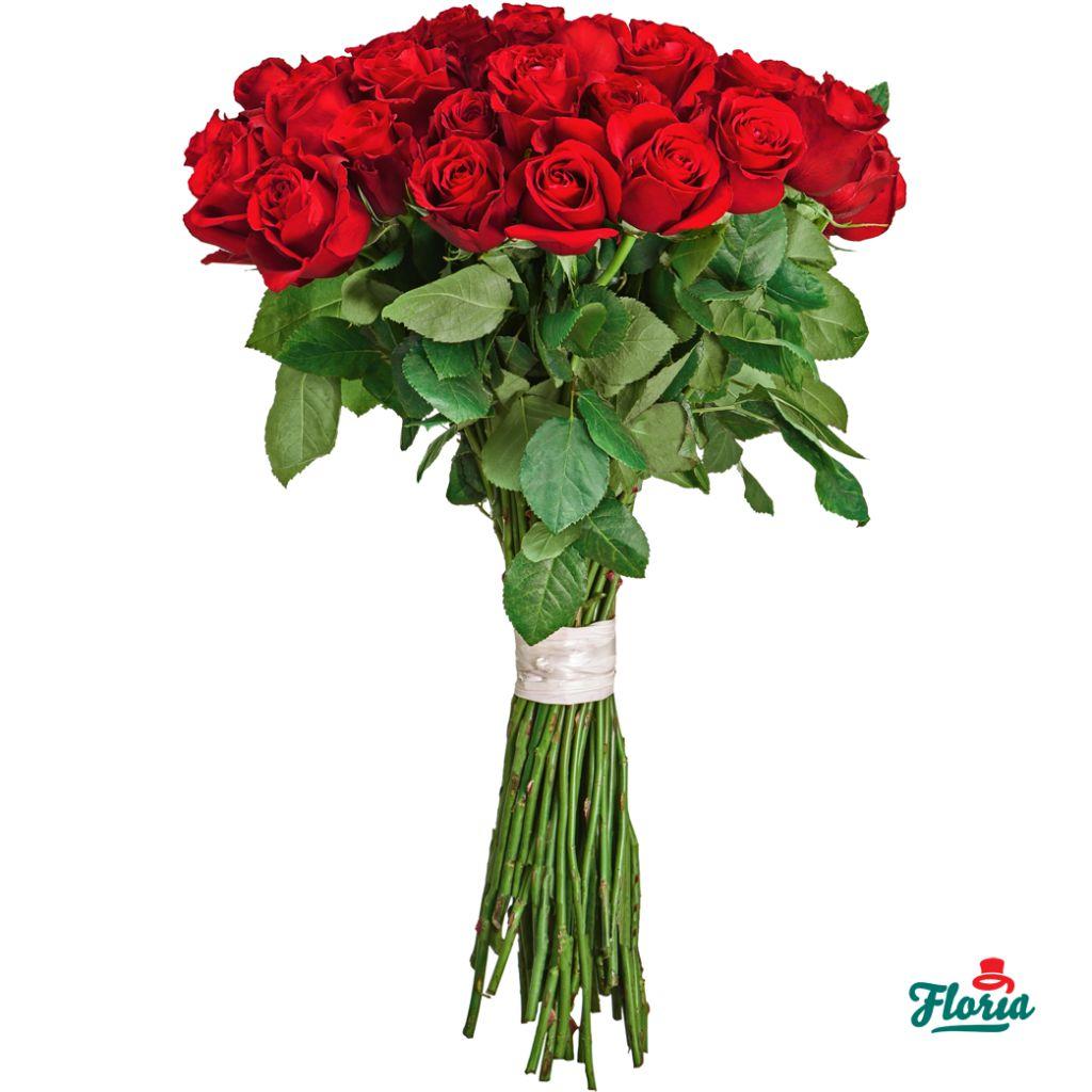 Buchet de 50 trandafiri rosii